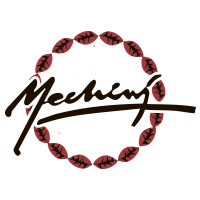 logo mechini
