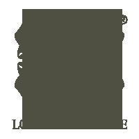 logo silik
