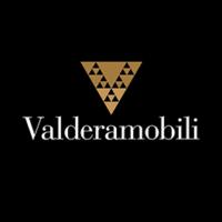 valderamobili logo